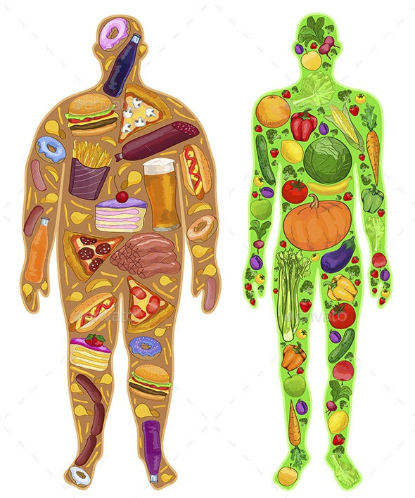 Man Fat and Thin Food in the Body - Food Objects