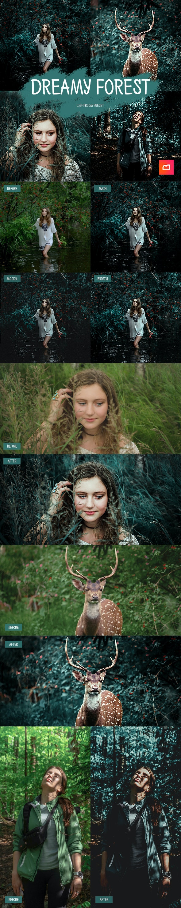 1+2 Dreamy Forest Lightroom Preset - Lightroom Presets Add-ons