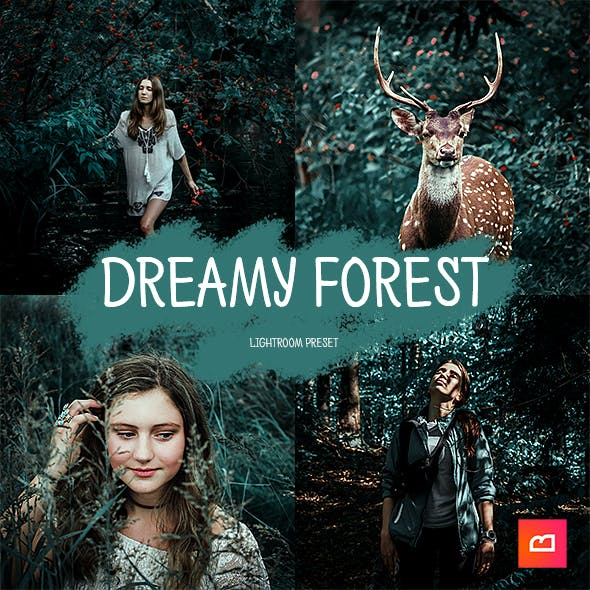 1+2 Dreamy Forest Lightroom Preset