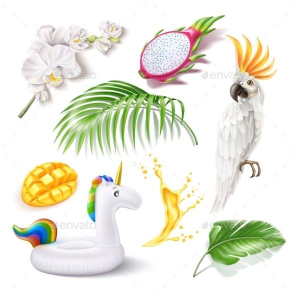 Vector Realistic Summer Holiday Tropical 3d Set