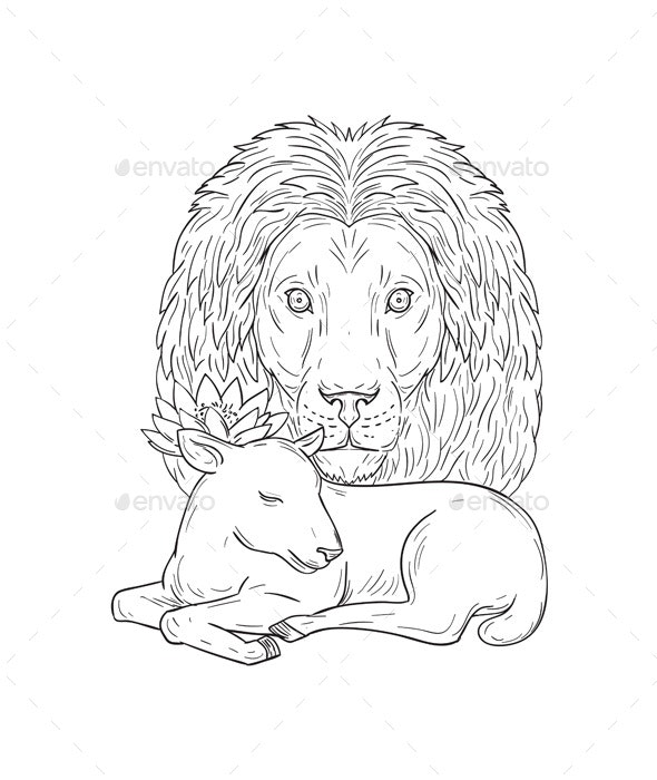Lion Watching Over Sleeping Lamb Drawing - Animals Characters