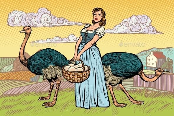 Ostrich Farm Eggs Woman Peasant Farmer - People Characters