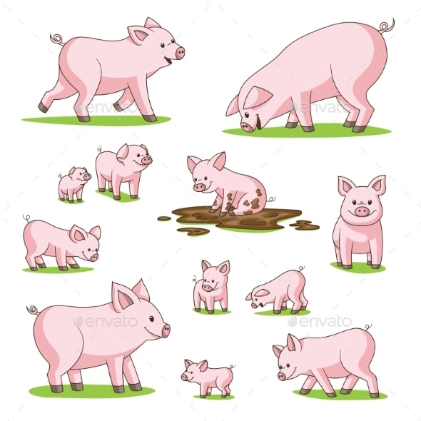 Collection of Pigs - Animals Characters