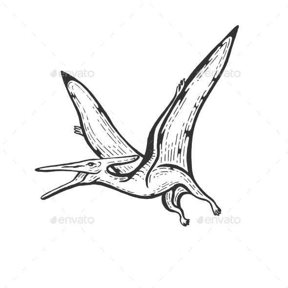 Pterodactyl Engraving Vector Illustration - Miscellaneous Vectors