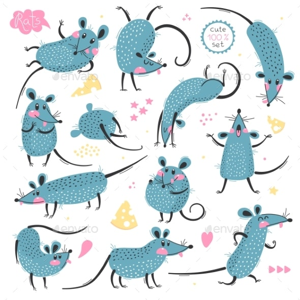 Set of Rats for Design - Animals Characters