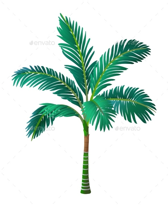 Vector Illustration of Palm Tree - Flowers & Plants Nature