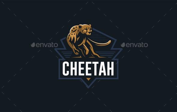 Cheetah - Animals Characters