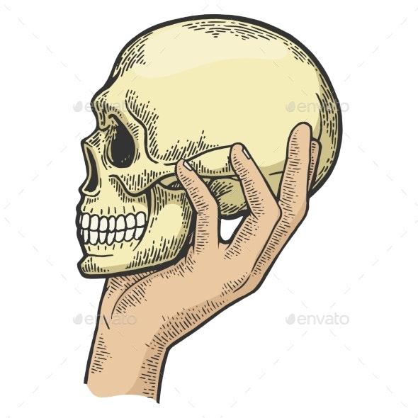 Human Skull in Hand Sketch Engraving Vector - Miscellaneous Vectors