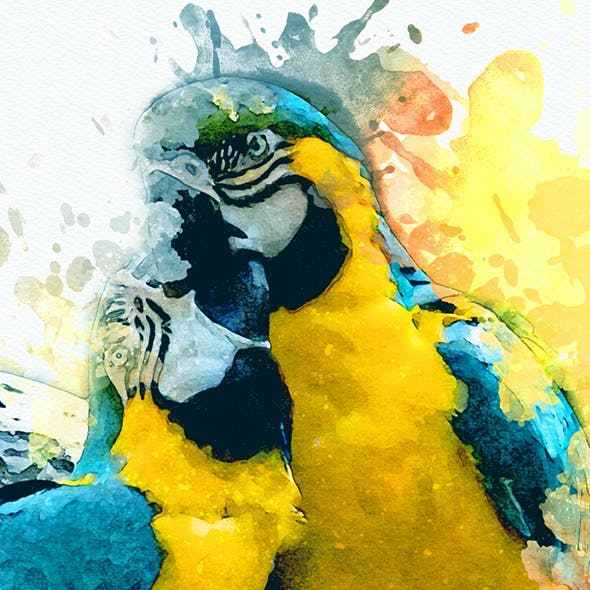 Splashed - Modern Watercolor Art | PS Action