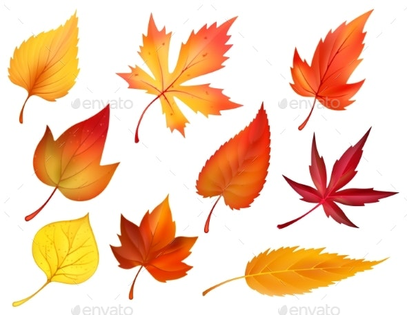 Autumn Foliage of Fall Falling Leaves Vector Icons - Flowers & Plants Nature