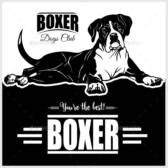 Boxer - Animals Characters