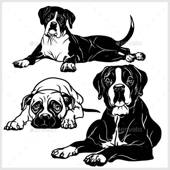 Boxer Dog - Animals Characters