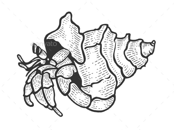 Hermit Crab Sea Animal Sketch Engraving Vector - Animals Characters