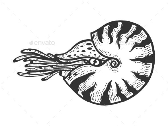 Nautilus Sea Animal Engraving Vector - Animals Characters