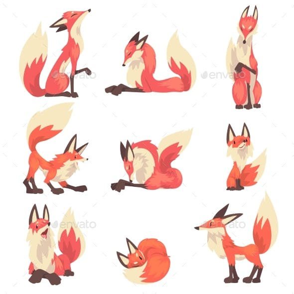 Collection of Red Foxes Characters Cartoon Vector