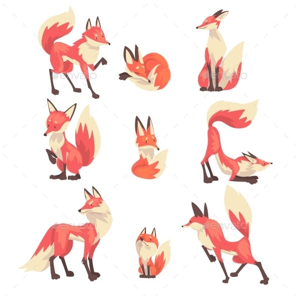 Collection of Red Foxes Characters Cartoon