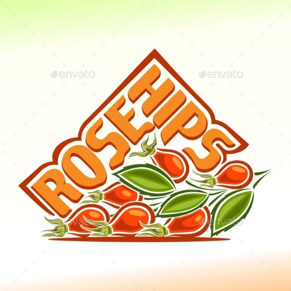 Vector Rose Hips - Food Objects