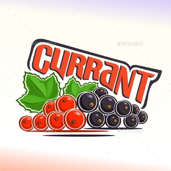 Vector Currant - Food Objects