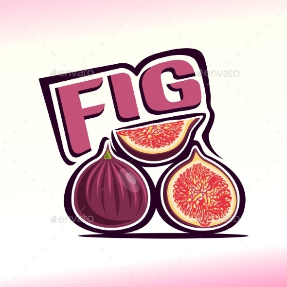Vector Fig - Food Objects