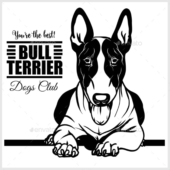 Bull Terrier - Vector Illustration for T-Shirt - Animals Characters