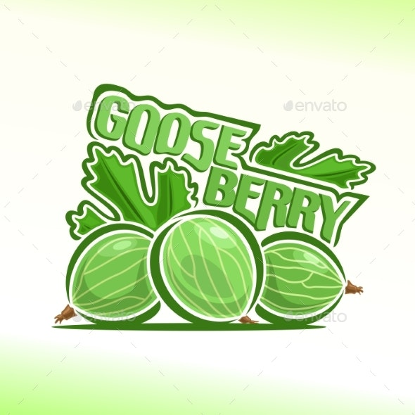 Vector Gooseberry - Food Objects