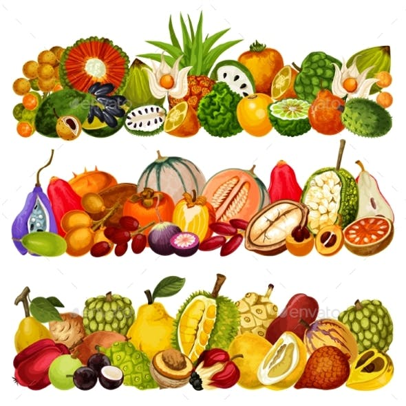 Exotic Tropical Fruits Farm Agriculture Harvest