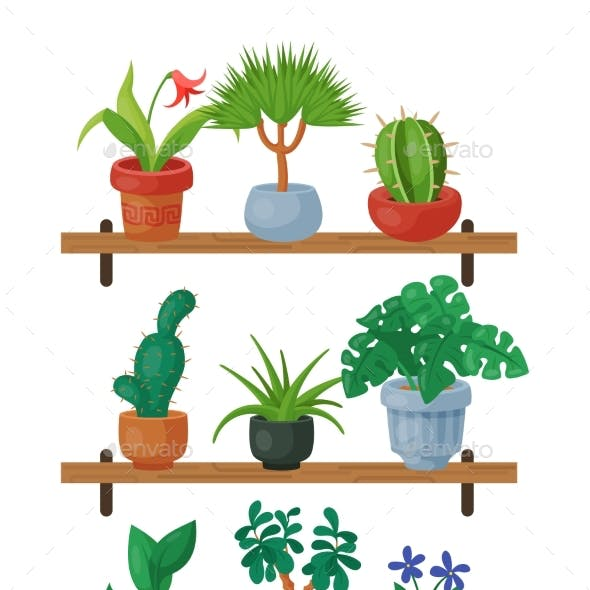 House Flowers Shelf Indoor Floriculture Vector