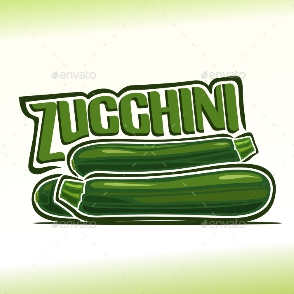 Vector Zucchini - Food Objects
