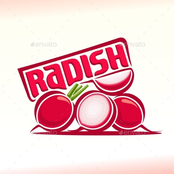 Vector Radish - Food Objects