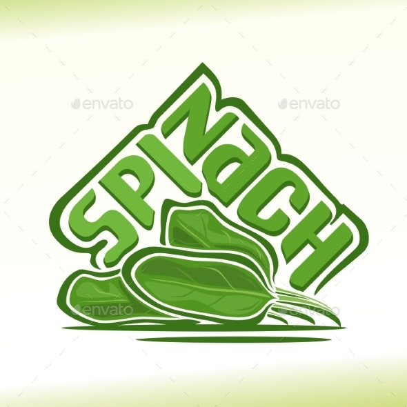 Vector Spinach - Food Objects
