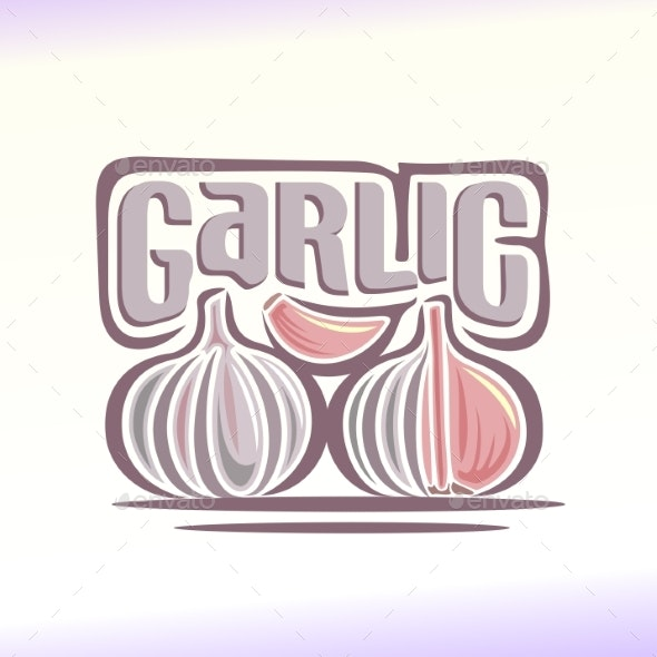 Vector Garlic - Food Objects