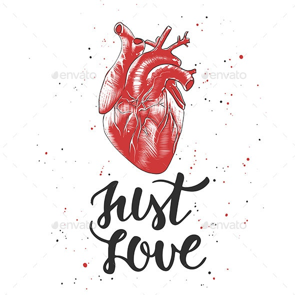 Quote Just Love With Sketch of Engraved Anatomical Heart - Miscellaneous Vectors