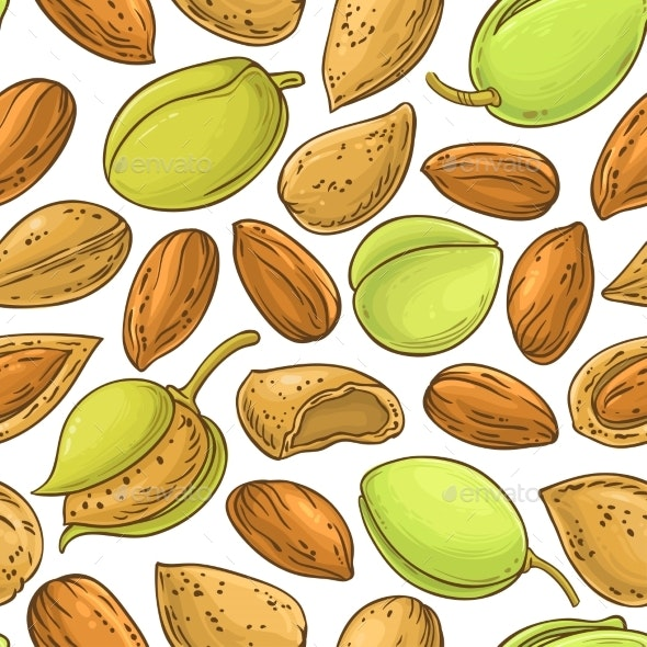 Almond Nuts Vector Pattern on White Background - Food Objects