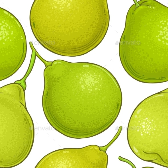 Bergamot Fruit Vector Pattern on White Background - Food Objects