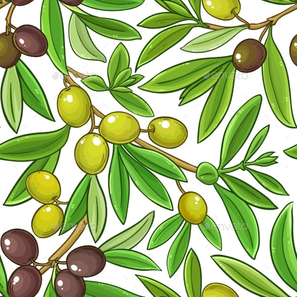 Olive Fruits Vector Pattern on White Background - Food Objects