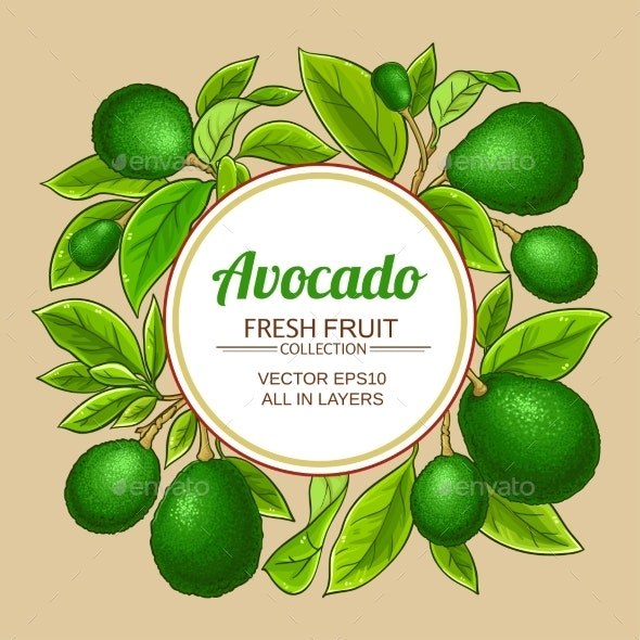 Avocado Branches Vector Frame on Color Background - Food Objects