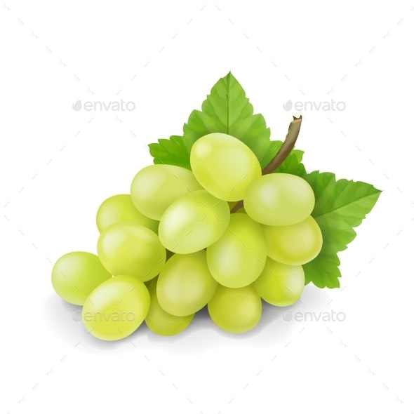 Yellow or Green Grapes Branch with Leaves - Food Objects