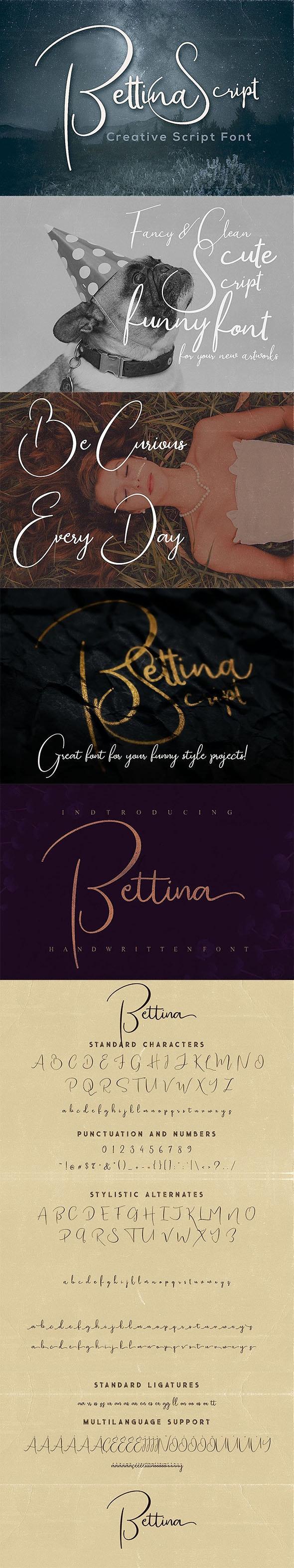 Bettina Script Font - Calligraphy Script