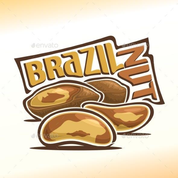 Vector Logo for Brazil Nut