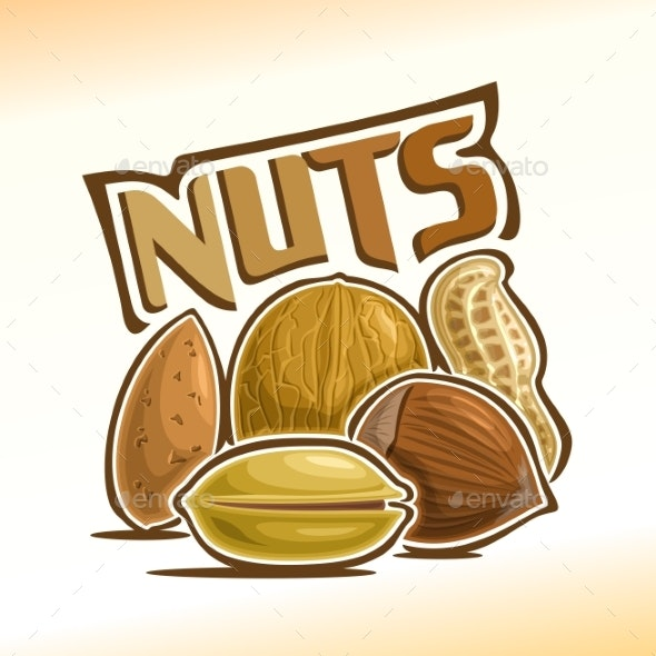 Vector Poster for Nuts - Food Objects