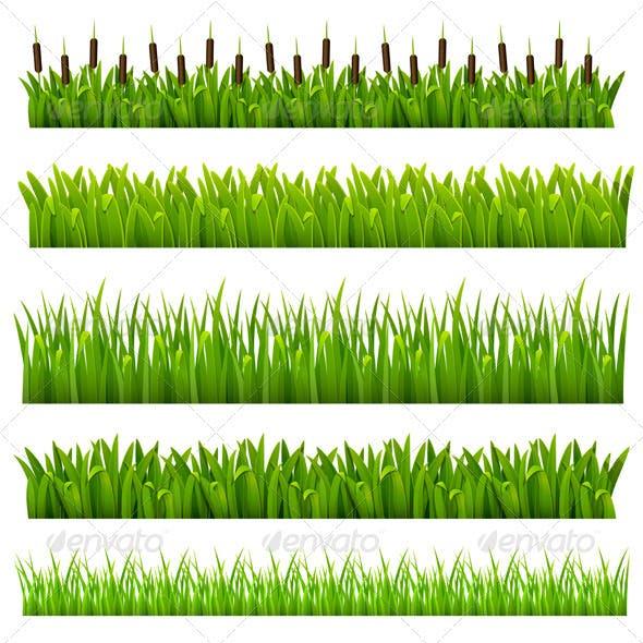 Set from grass