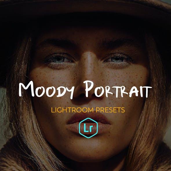 21 Moody Portrait Lightroom Presets