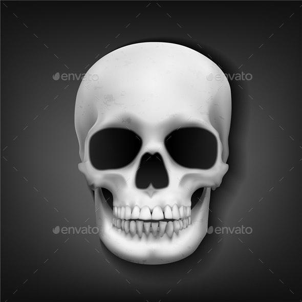 Realistic Skull Head on Dark Background - Halloween Seasons/Holidays