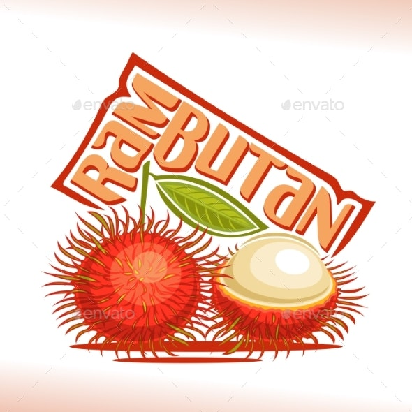 Vector Rambutan Fruit - Food Objects