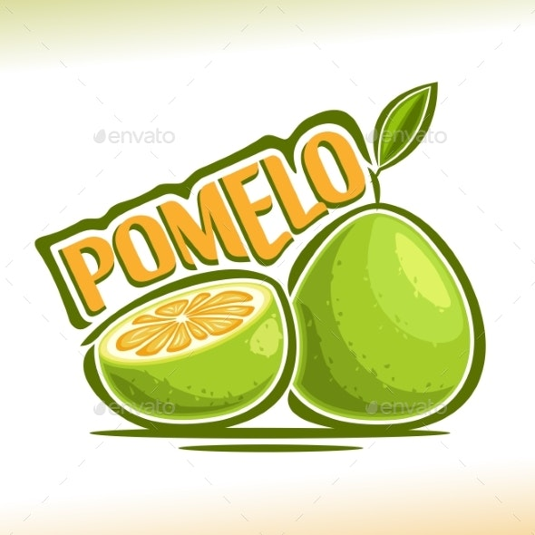 Vector Pomelo Fruit - Food Objects
