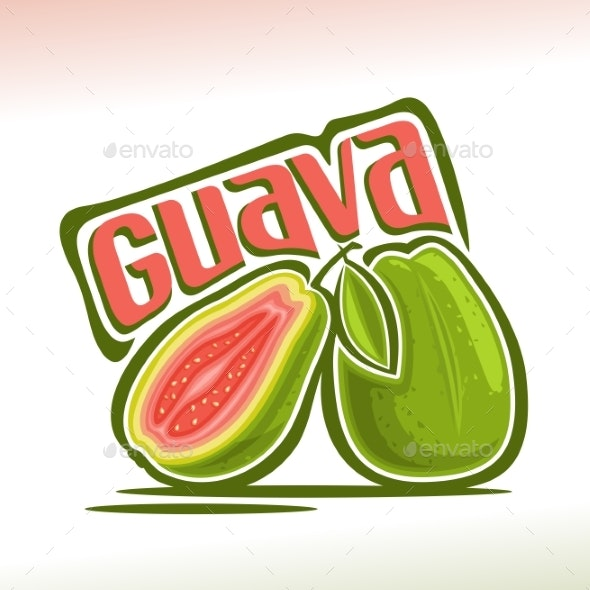 Vector Guava Fruit - Food Objects