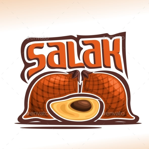 Vector Salak Fruit - Food Objects