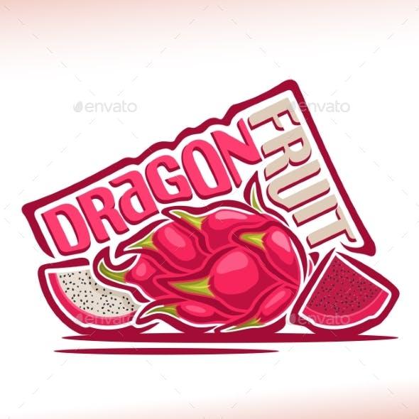Vector Dragon Fruit