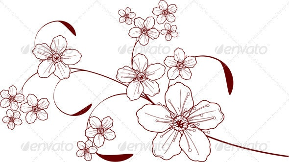 Cherry Blossom Design - Flowers & Plants Nature