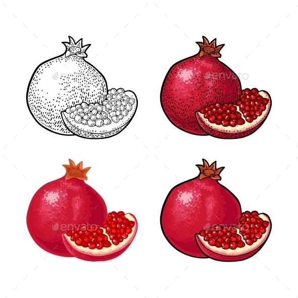 Whole and Half Garnet Fruit with Seed Vector - Food Objects